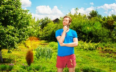 Why should I hire an experienced and fully insured landscape contractor?