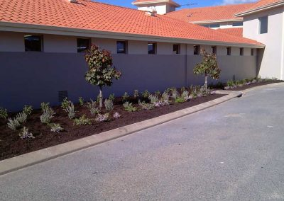 garden edging landscaping