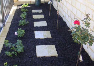 1-Limestone-Steppers-in-Black-Mulch