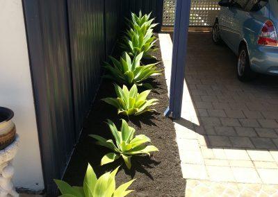 residential garden edging