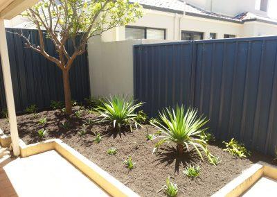 backyard garden edging