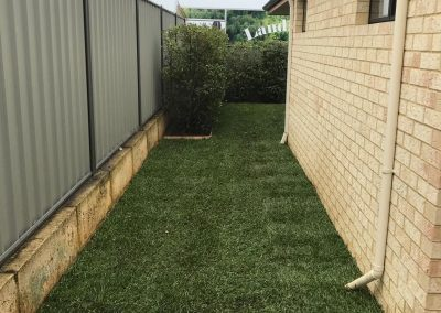 backyard garden makeover baldivis