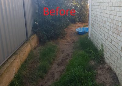 backyard makeover before