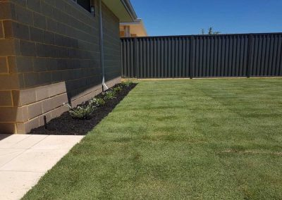 turf installation landscaping