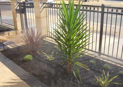 Planting-Inspiration-(10)