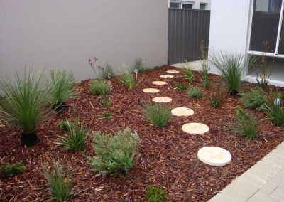 planting and stepper paths landscaping inspiration