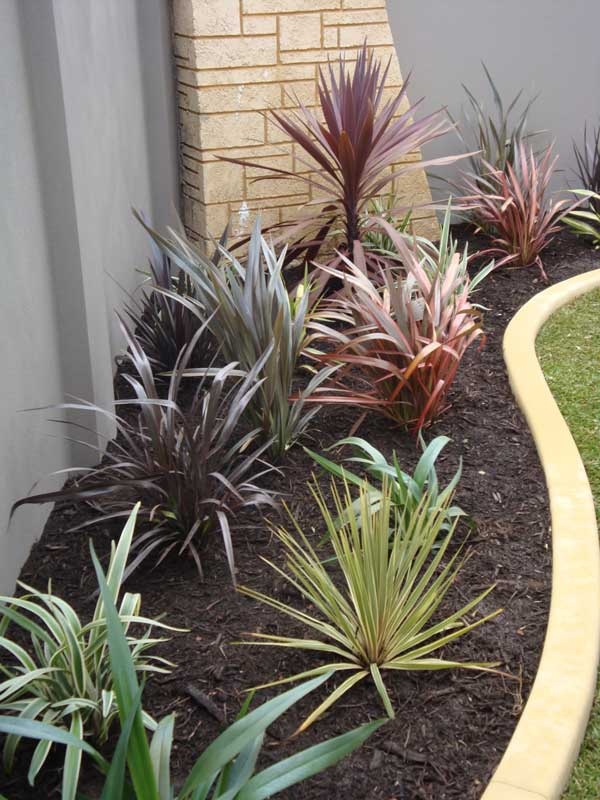 planting and garden edging landscaping inspiration