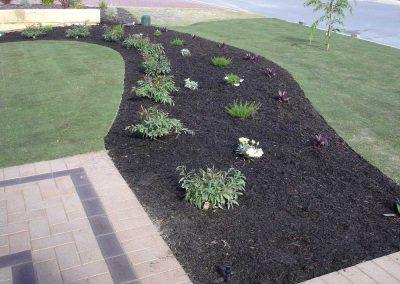 Planting-Inspiration-(27)