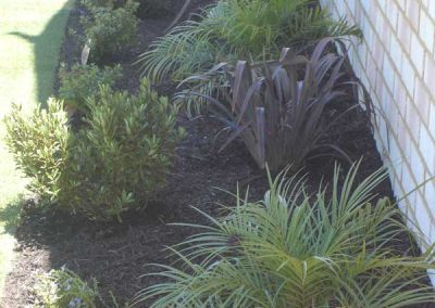 Planting-Inspiration-(3)