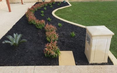 4 Landscape Edging Styles to Transform Your Backyard