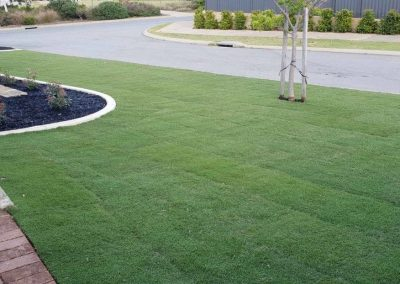 Front Lawn Makeover & Turf Installation
