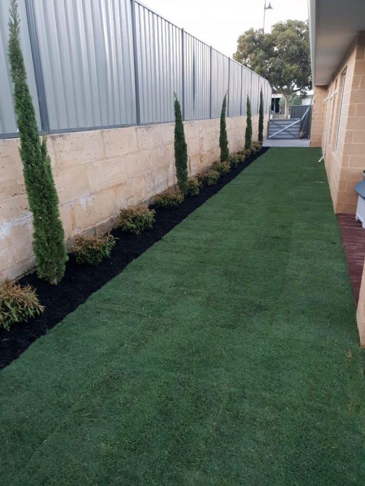 Wintergreen Turf Installation