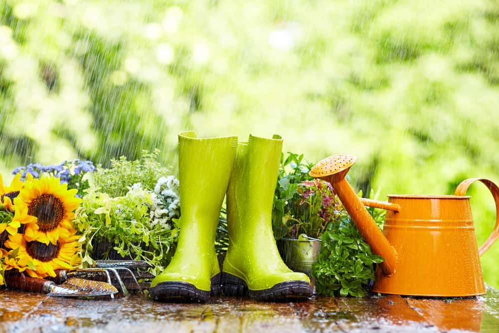 boots and gardening tools