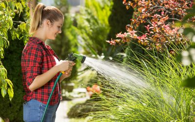 When Can Reticulation Be Turned On In Perth? Your 2019/2020 Watering Guide