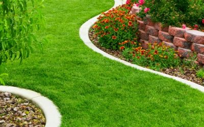 Importance of Lawn Edging