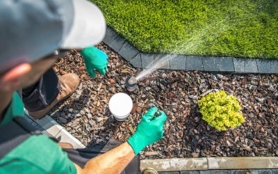 4 Easy Irrigation and Reticulation Tips For Your Garden
