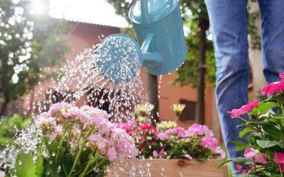 Tips For Watering Your Garden